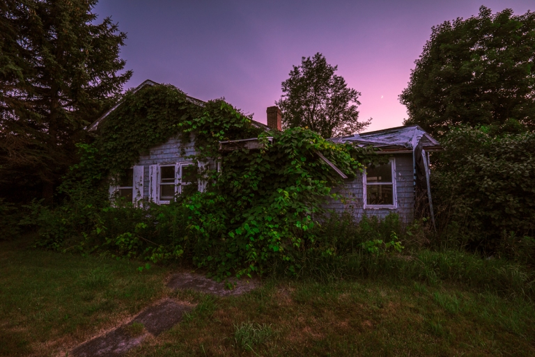 Abandoned Home Consumed by Ivy 2