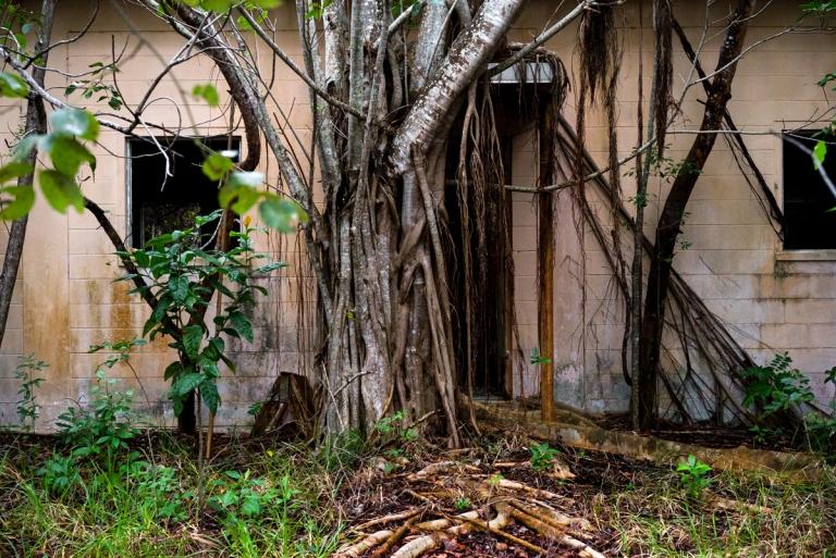 Abandoned Overgrown Nike Missile Base 2