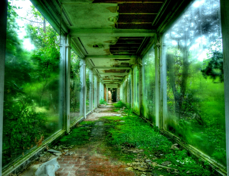 abandoned overgrown hallway green